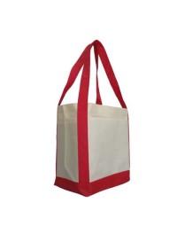 Non-woven Bag (20)