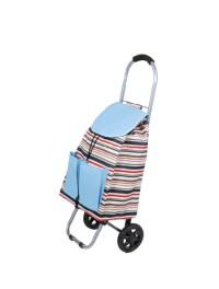 Shopping Trolley (10)