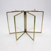 Specimen Metal Frame